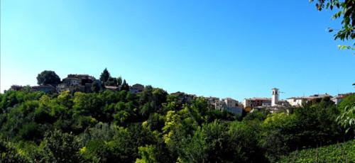 panorama_vista